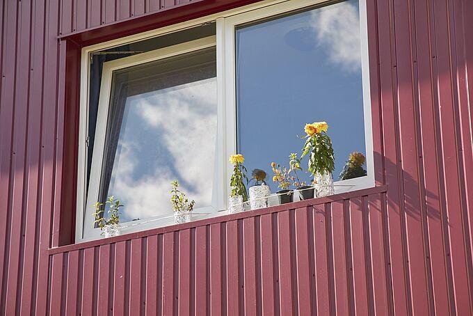 Fenster einer Unterkunft